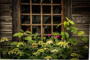 Barn window Panama Rocks